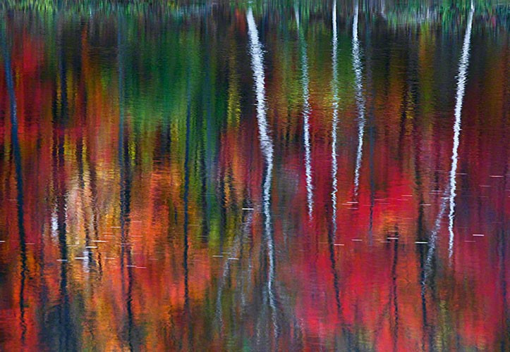 peter lik one peter lik fine art photography image