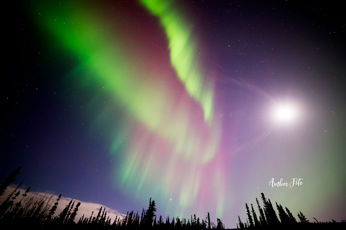 17 Mesmerizing Photos of the Northern Lights