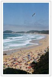 beachd0706.jpg