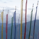 Jigme Tshering