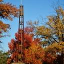fall2011-11-08 021