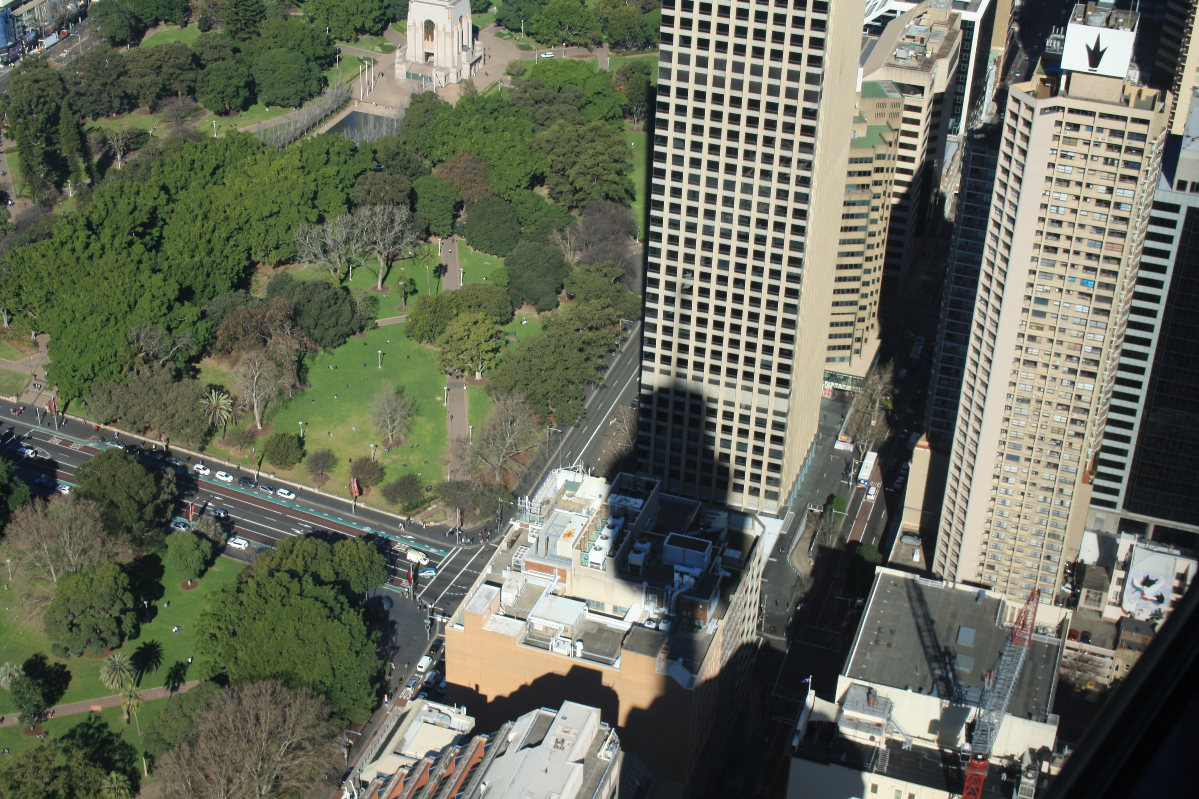 From Sydney Tower