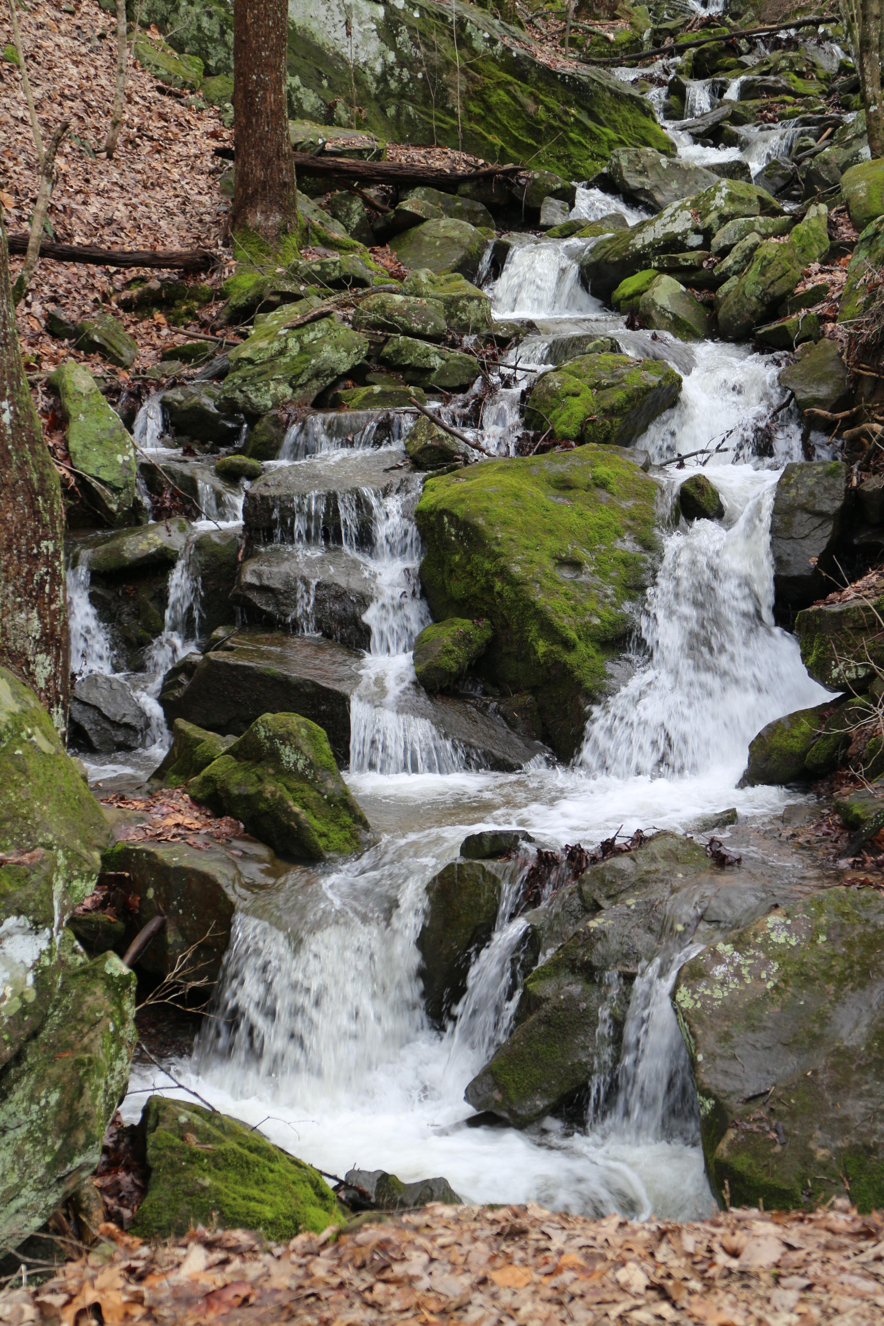 Sewanee Falls