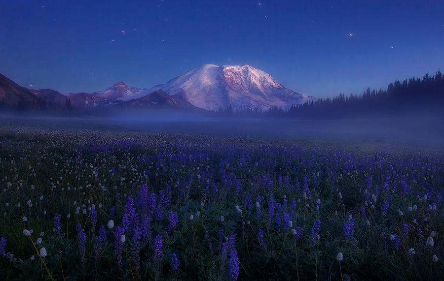 Starlit Rainier