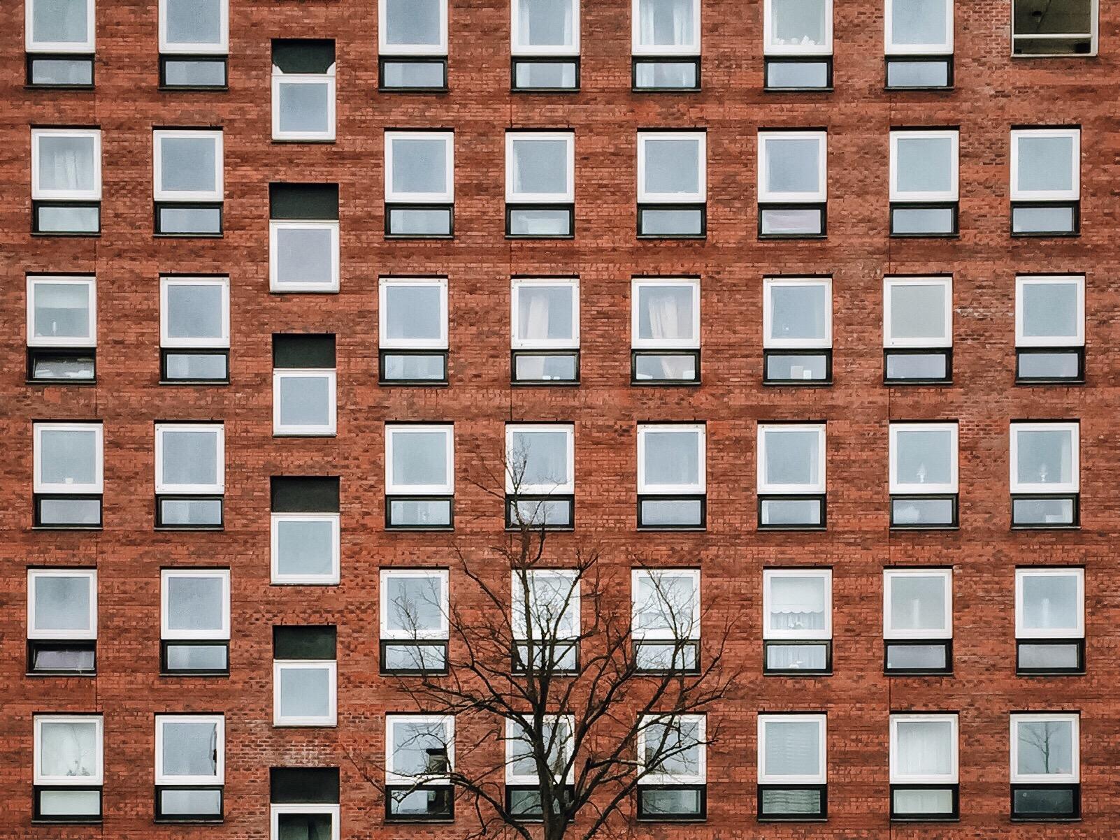 Polaroid Windows