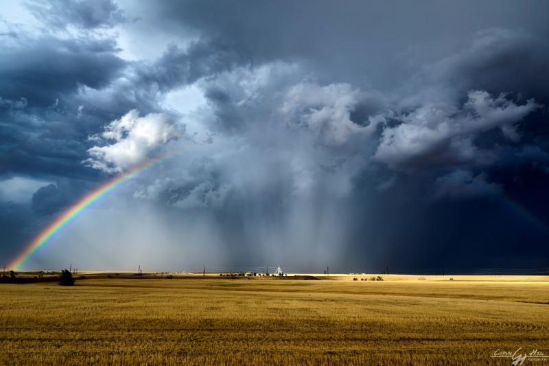 Under a rainbow sky_89A1115