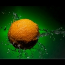 Orange-Spash.web