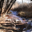 Fountain_Creek_03Web