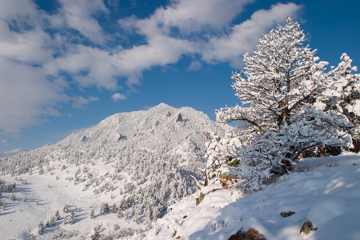 Blue-bird skies after a heavy spring snow storm in Boulder, Colorado