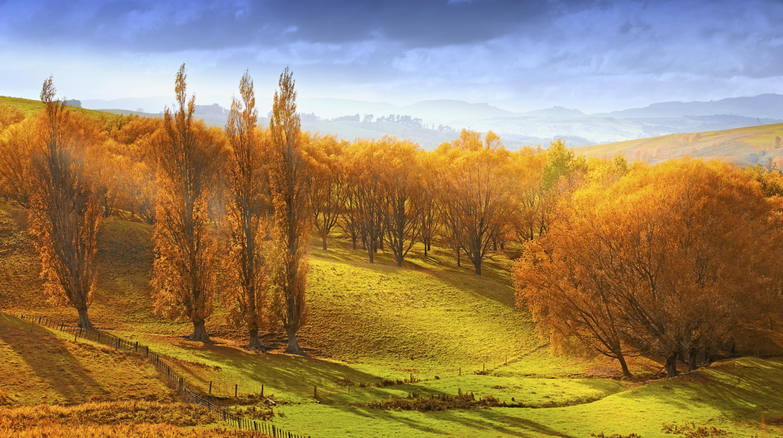 Sunrise in autumn in New Zealand