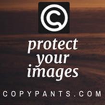 Sponsored Image