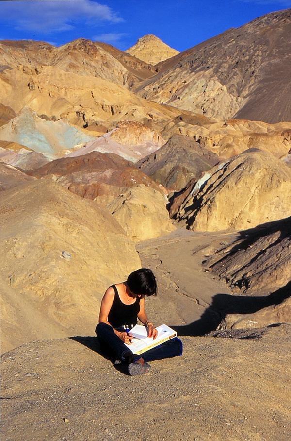 desert-artist.jpg