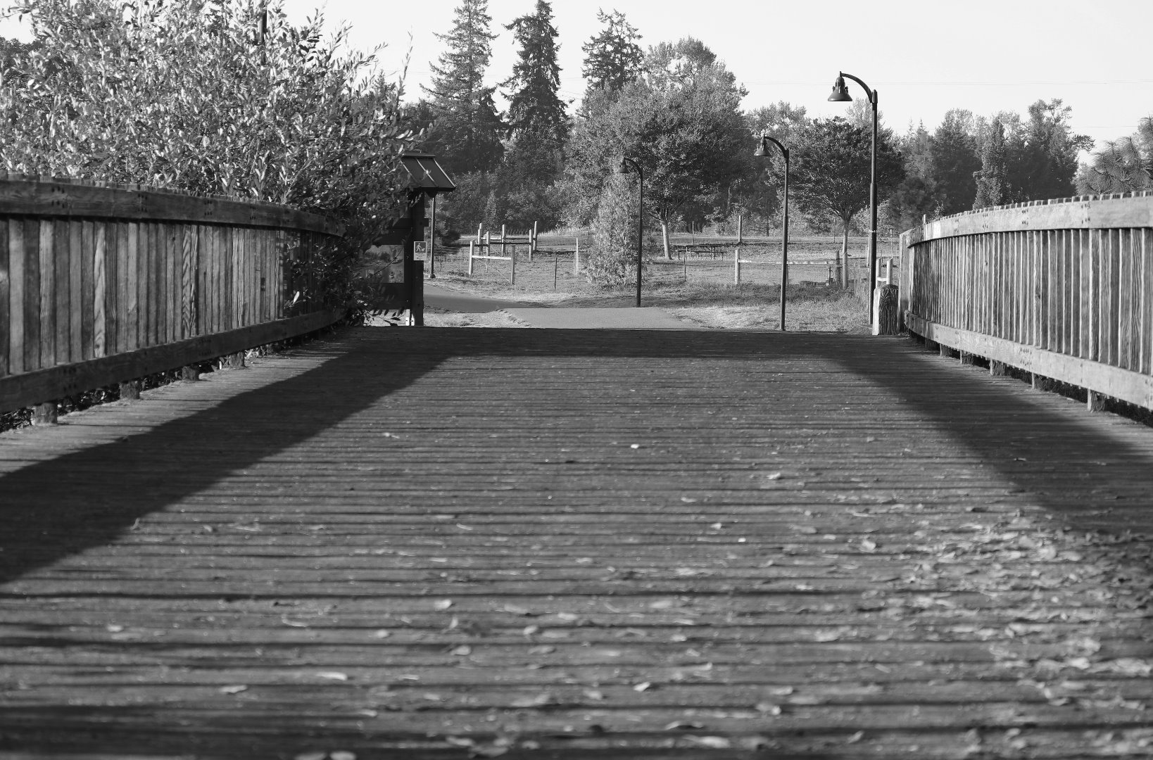 bridgebw1.jpg