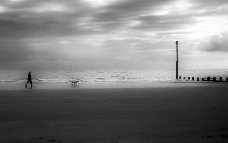 BeachDogWalkHDR.jpg