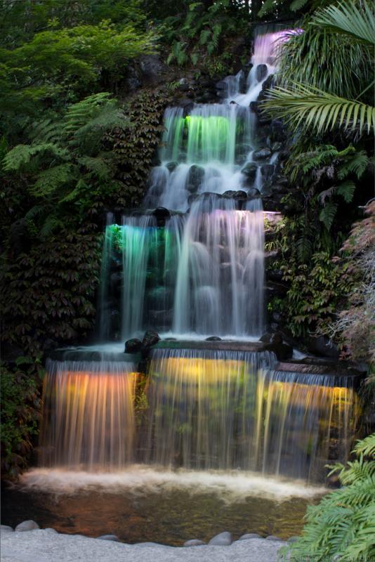 PukekuraPark-Waterfall.jpg
