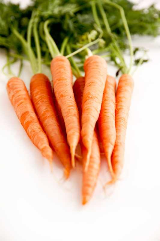 Carrots05.jpg