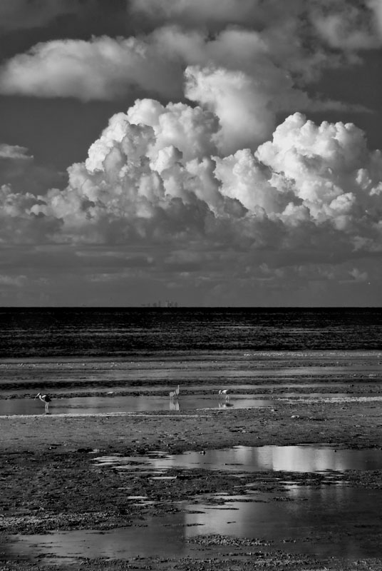 Seashorewithcloudsoverhead.jpg