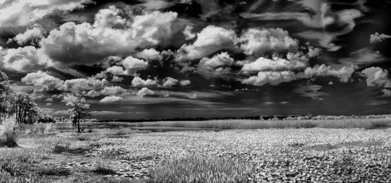 cloudsoverthebayn.jpg
