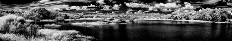 cloudydayattheparkn.jpg